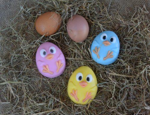 """ΠΑ9 """"Happy eggs"""""""
